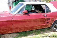1967_Ford_Mustang_GG_2021-04-14.0011