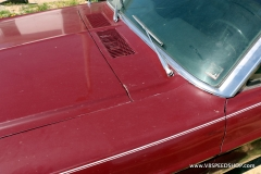 1967_Ford_Mustang_GG_2021-04-14.0038