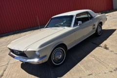 1967 Ford Mustang MD