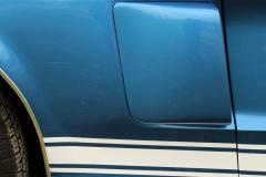 1968_Shelby_GT500_WW_2020-12-07.0131