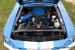 1968_Shelby_GT500_WW_2020-12-07.0144