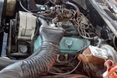 1976_Pontiac_TransAm_DE_2019-06-27.0156