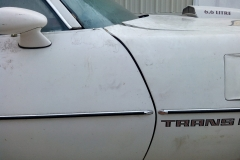 1978_Pontiac_TransAm_BH_2021-10-07.0057
