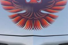 1979_Pontiac_TransAm_DP_2021-08-23_0010
