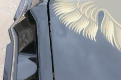 1979_Pontiac_TransAm_AE_2021-05-17.0045