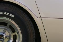 1981_Chevrolet_Corvette_TM_2021-08-03.0014