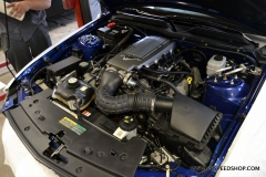 2008_Ford_Mustang_MS_2014-06-11.0004